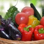 北国での家庭菜園・・・ナス・キュウリ・トマト